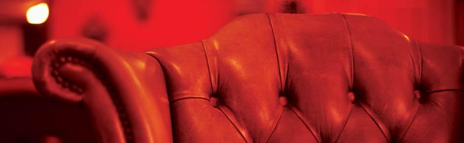 Lounge Leather Couches